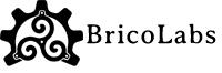 Bricolabs: Organizador OSHWDem